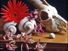 goat-skull-and-orchids